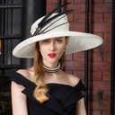 Ladies' Fashion/Special/Glamourous/Elegant/Unique/Eye-catching/Fancy/High Quality/Romantic Cambric With Feather Beret Hat
