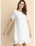 Lace With Lace/Solid Knee Length Dress