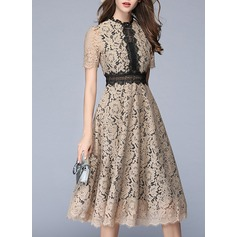 Lace With Lace/Stitching Knee Length Dress (199127166)