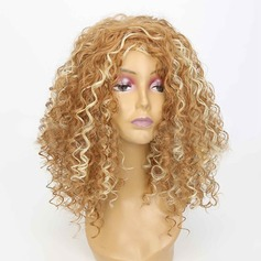 Kinky Curly Synthetic Hair Synthetic Wigs 300g