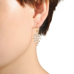 Elegant Resin Ladies' Earrings