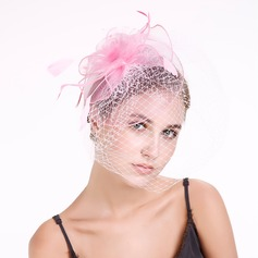 Dames Style Classique Feather/Fil net avec Feather Chapeaux de type fascinator