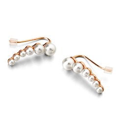 Exquisite Alloy Imitation Pearls Ladies' Fashion Earrings