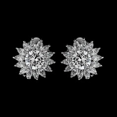 Charming Zircon Ladies' Earrings